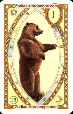 The bear, monthly Love and Health horoscope February Aquarius