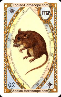 The mice, monthly Love and Health horoscope December Aquarius
