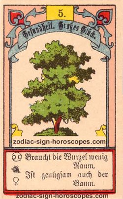 The tree, monthly Aquarius horoscope February
