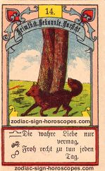 The fox antique Lenormand Tarot